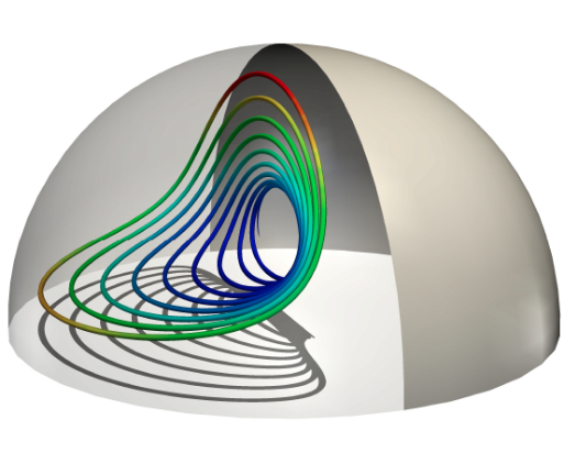 Flow within a hemispherical vesicle